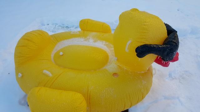 6_SnowDuck